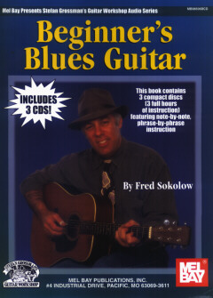 Fred Sokolow / Beginner's Blues Guitar
